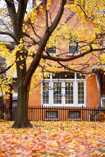 How-to-Build-a-Home-Renovation-Marketing-Campaign-for-Fall