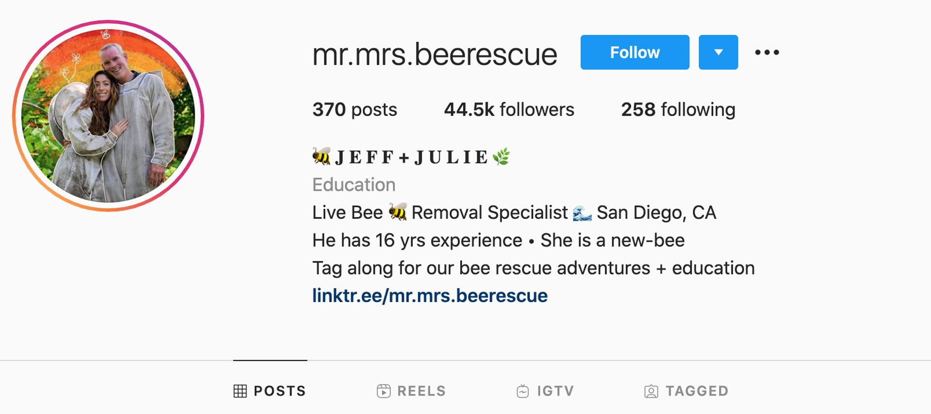 mr-mrs-bee-rescue-instagram-profile
